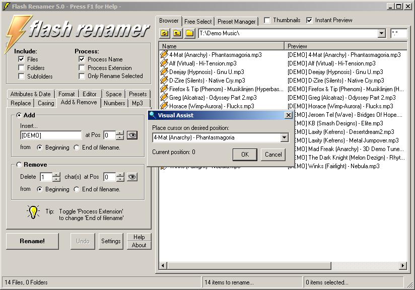 Flash Renamer 5.0